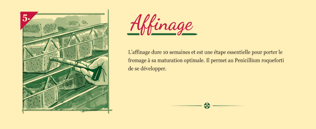 Saint Agur - Fabrication 05
